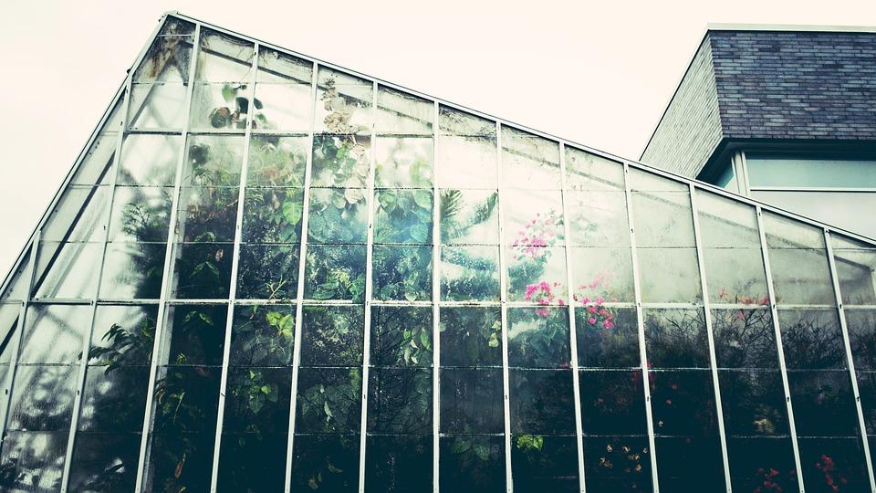 Novak Serre e giardinaggio